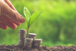 Make the most from investing in startups with Seedrs