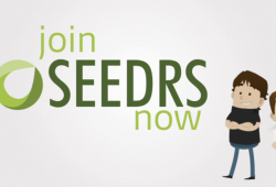 How to create a Seedrs campaign