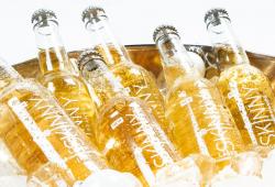 Campaign Spotlight: Skinny Brands – low-calorie premium lager