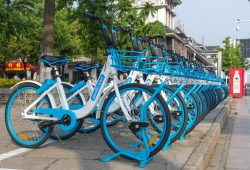 Campaign Spotlight: Cycle.land – disrupting urban transport
