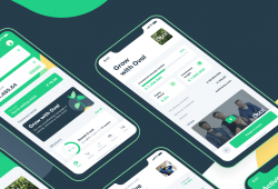 Seedrs Partners With Oval To Build First In-App Investment Experience